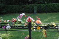 Pohřební ústav Pegas CZ s.r.o. - foto